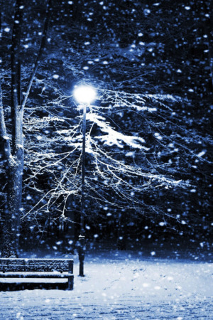Snow Night Park Nature IPhone Wallpaper Mobile Wallpaper