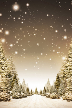 Winter Forest Nature IPhone Wallpaper Mobile Wallpaper