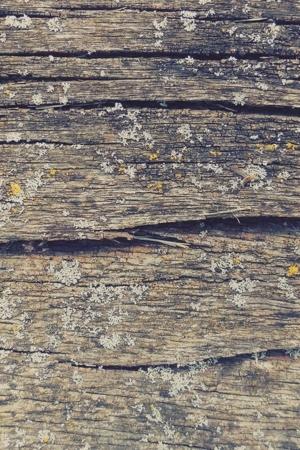 Wood Texture Art Nature IPhone Wallpaper Mobile Wallpaper