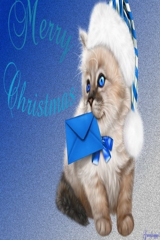 Cute Kittie Merry Christmas IPhone Wallpaper Mobile Wallpaper