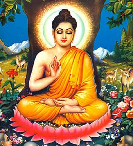 Budha Mobile Wallpaper