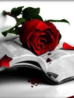 Gothic Rose Mobile Wallpaper