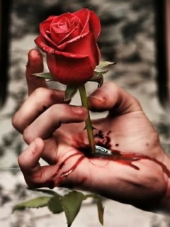 Love Hurts Mobile Wallpaper