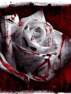 Bloody Rose Mobile Wallpaper