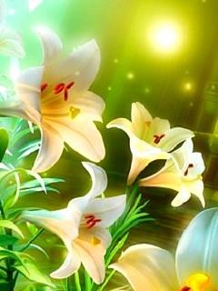 White Lilies Mobile Wallpaper