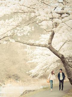 Walking Couple Mobile Wallpaper