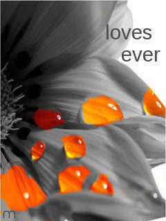 Loves Ever Mobile Wallpaper
