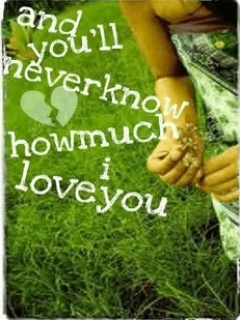 How Much I Love You Mobile Wallpaper
