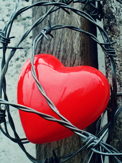 Heart Close Mobile Wallpaper