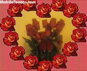Red Roses Mobile Wallpaper