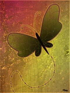 Beautiful Butterfly Wallpaper Mobile Wallpaper