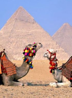 Parking Lot Giza Egyptparkin Mobile Wallpaper