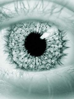 Eye3 Mobile Wallpaper