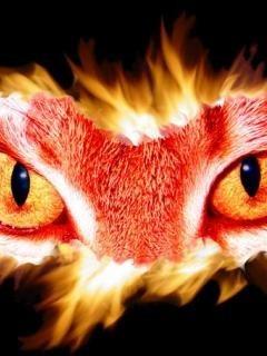Cat Lion Mobile Wallpaper