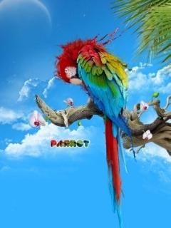 Parrot Mobile Wallpaper