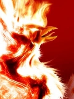 Pheonix Mobile Wallpaper