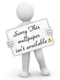 Sorry Mobile Wallpaper