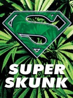 Super Skunk Mobile Wallpaper