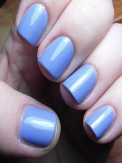 Blue Color Hydrangea Mobile Wallpaper