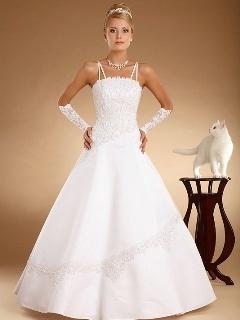 Bride White Cat Mobile Wallpaper