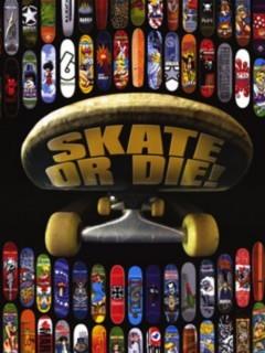 Skate Or Die Mobile Wallpaper