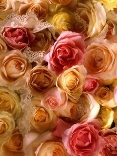 Rose Bridal Bouquet Mobile Wallpaper
