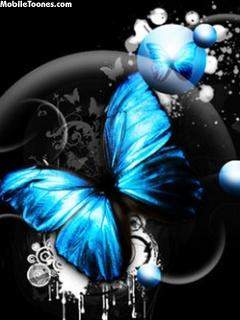Blue Butterfly Mobile Wallpaper