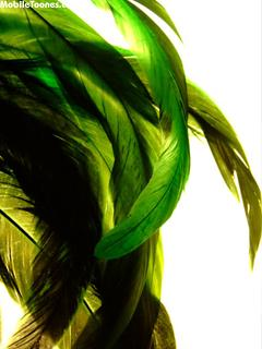 Green Mobile Wallpaper