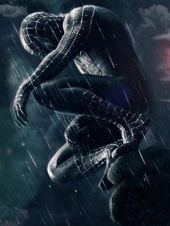 Spider Man Rain  Mobile Wallpaper