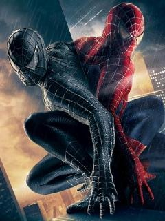Spider Manss Mobile Wallpaper