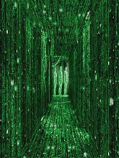 The Matrix Mobile Wallpaper