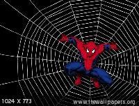 Spider Man02 Mobile Wallpaper