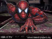 Spider Man05 Mobile Wallpaper