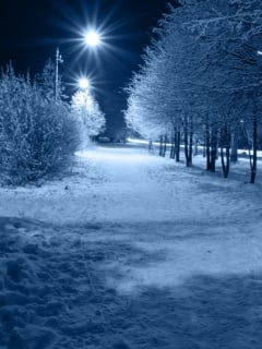 29469 winter night wallpaper - Polling for mobile mania comp nov 2012