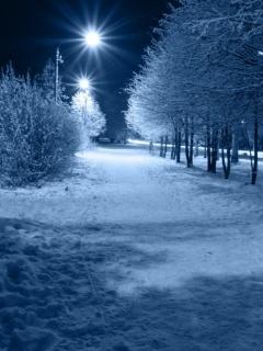 Winter Night Wallpaper Mobile Wallpaper