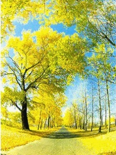 Yellow Tree Sunshine Wallpaper Mobile Wallpaper