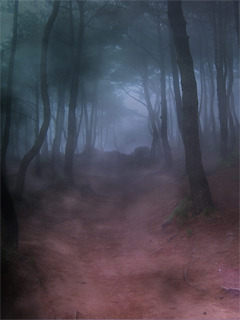 Dark Forest Mobile Wallpaper