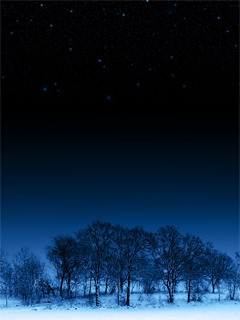 Night Trees Mobile Wallpaper