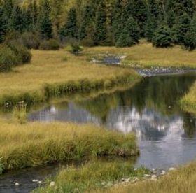 Grand Teton National Park Mobile Wallpaper