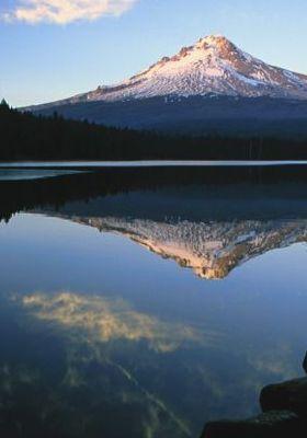 Mount Hood From Trillium Lake Oregon Mobile Wallpaper