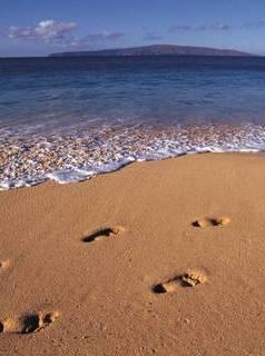 Foot Nihj At Sea Mobile Wallpaper