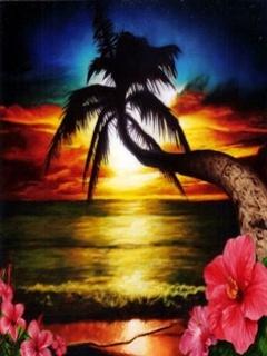 Paradise  Mobile Wallpaper
