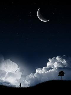 Night Scene Mobile Wallpaper