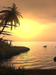 Tropical Sunset Mobile Wallpaper