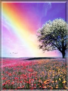 Download Colorful Nature Mobile Wallpaper | Mobile Toones