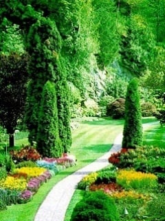 Garden Mobile Wallpaper