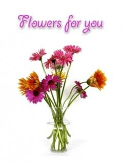 Flower For You Mobile Wallpaper