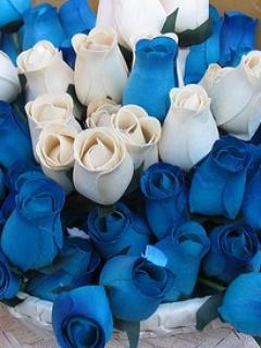 Blue N WhiTE Mobile Wallpaper