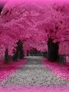 Love Pink Road Mobile Wallpaper