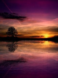 Pink Sunset Mobile Wallpaper